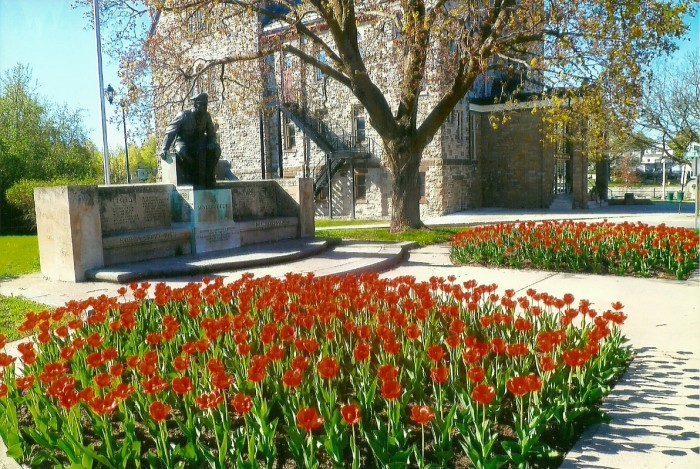 The best ever display of tulips planted by the society last fall at the cenotaph makes a glorious statement. The Almonte Legion and Mississippi Mills contribute to the cost of the public plantings in Almonte but many hours of volunteer labour are donated as well.