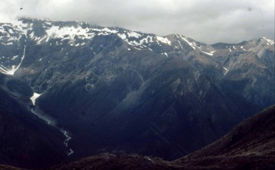 1071 - New Zealand