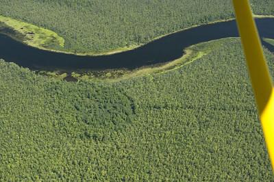 Aerial view of Appleton wetlands