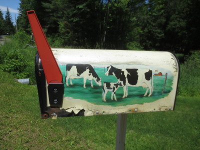 Scenes of grazing cattle are on mailboxes here and there in our area.