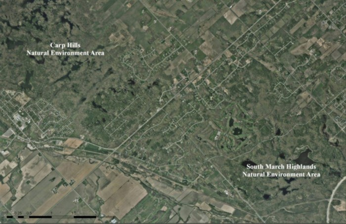 Figure 1. Country estate lot subdivisions have separated two Core natural areas, the Carp Hills Natural Environment Area and the South March Natural Environment Area causing an ecological separation of species such as Blanding turtles. Such subdivisions are now banned in Ottawa and in many other municipalities. Nick Stow ©