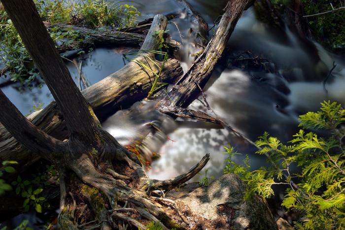 Stream near Blakeney