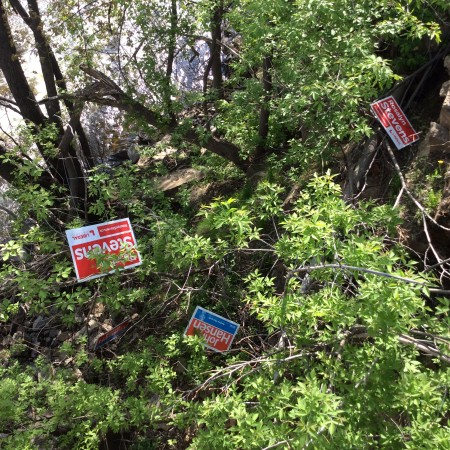 Signs for Liberal Candidate Rosalyn Stevens and NDP candidate John Hansen have been uprooted and tossed into the nearby gully