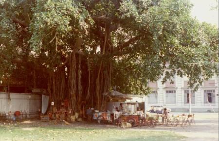 c60 - Thailand