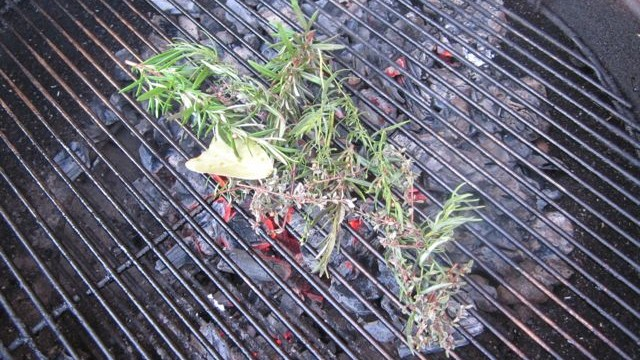 herbs on grill