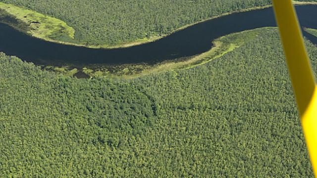 Appleton wetlands aerial view