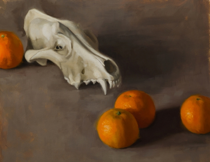 Wolf skull and oranges