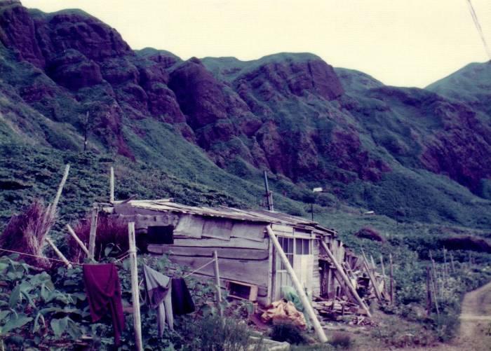 A farmer's hut on a coastal road.