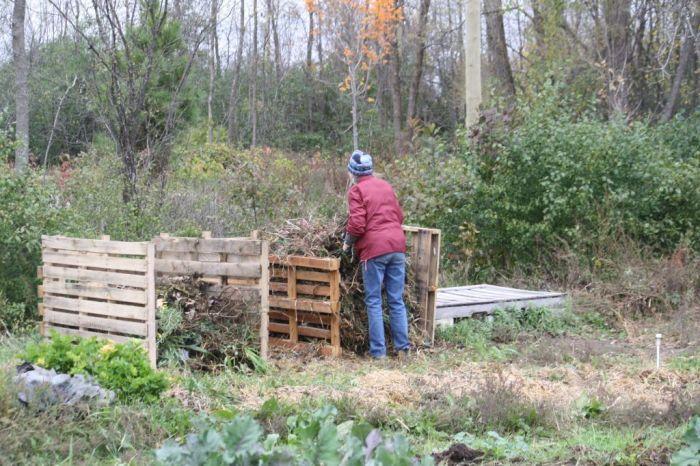 IMG_3568 - composting