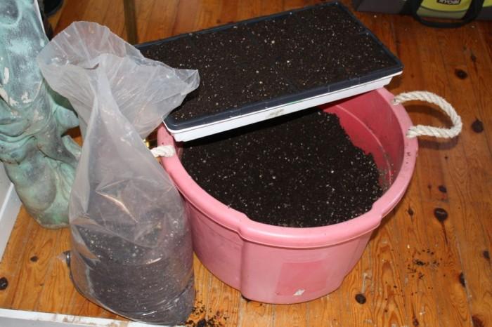 IMG_0742 - bucket of soil