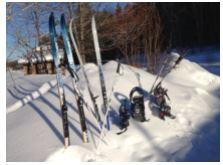 Skis in snowbank