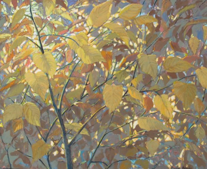 Fall Colour  40x32 inches   Acrylic on Canvas