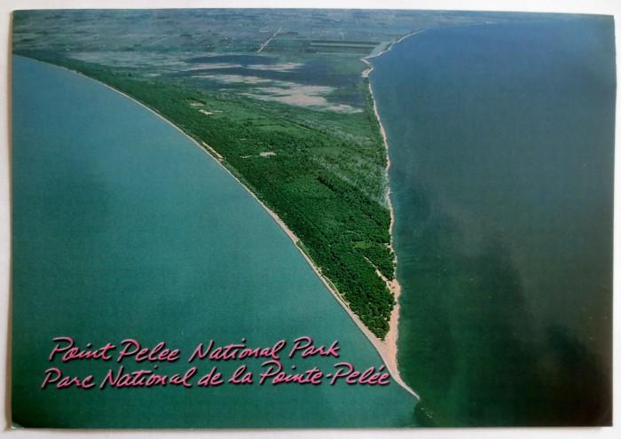 Point Pelee Postcard