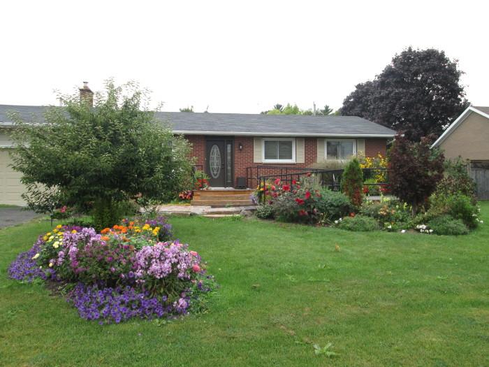 Robin Singleton's garden