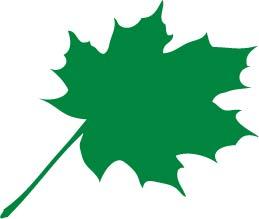 Big Leaf Top