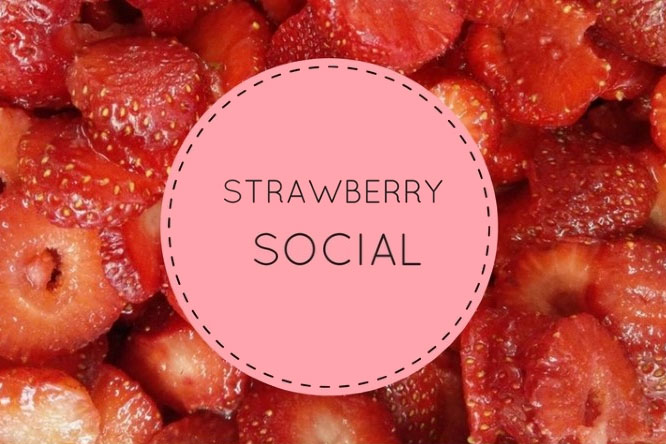 Image result for strawberry social