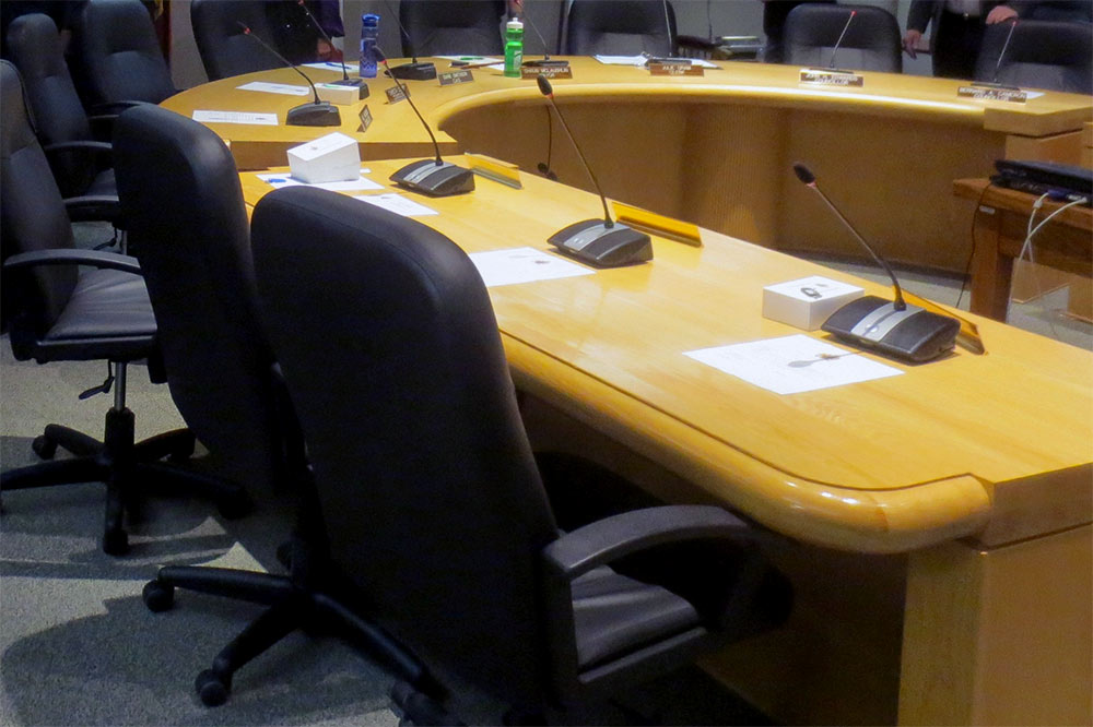 Wild parsnip spraying and deputy mayor vote dominate council meeting